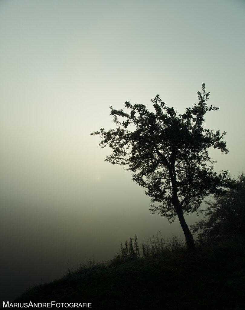 Eifel-7.jpg
